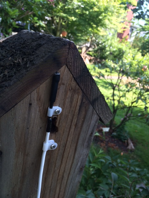 Light sensor for Pullet-Shut mounted on back of bird house