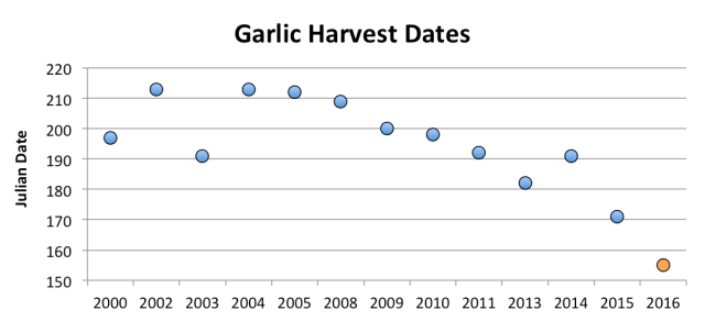 GarlicHarvestDates