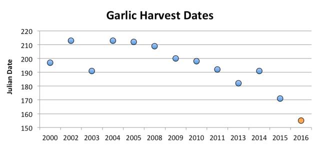 GarlicHarvestDates